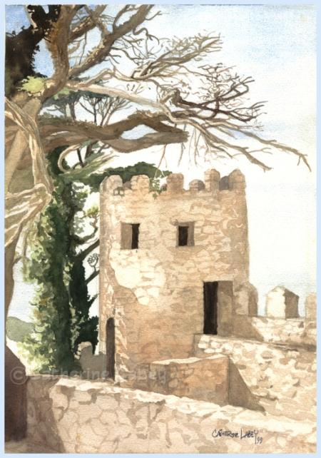 árvore-seca-no-castelo-dos-mouros